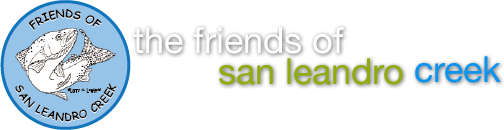 Friends of San Leandro Creek