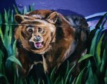 image bear-jpg
