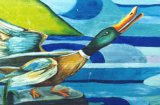 image duck2-jpg